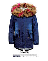 Куртки джинсовые на меху для девочек оптом, Glo-Story, 110-160 рр., арт.GSX-7571, фото 1