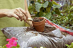 «Чистый лист» — современный подход к удобрению растений