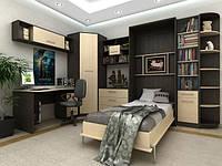 Мебель для детской с встоенным шкафом кроватью