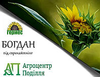 Семена подсолнечника под евролайтинг Богдан ІМІ 112-118 дн.