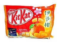 Kit Kat Japanese Iyokan Mandarin Orange
