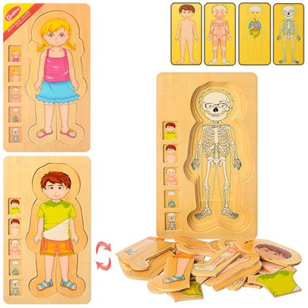 Деревянная игрушка Гардероб MD 1181 обучающий
