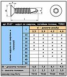 WS 9167 (DIN 7504) : нержавеющий самонарезной шуруп с потайной головкой, TORX, фото 6