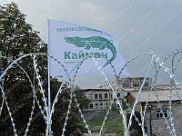 Егоза Кайман 400/5 заграждение колюче режущее спиральное ЗКР-С, фото 1