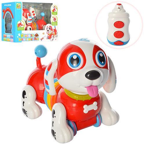 Собака BB396 (12шт) р/у,25см,ездит,муз-зв(англ),св,пианино,подв.голова