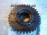 Шестерня понижающего редуктора МТЗ-80, Д-240, фото 4