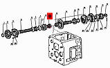 Шестерня 3 передачі МТЗ-80, Д-240, фото 5