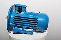 Электродвигатель електродвигун АИР 225 М8 30 кВт 700 об/мин Украина
