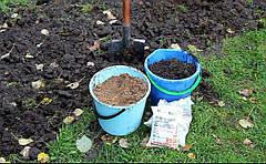 Какие удобрения вносить осенью в саду и в огороде? Виды и дозировка