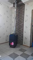 Печь Теплодар ТОП 300 с чугунной дверкой со стеклом, фото 3