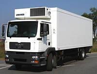 Лобовое стекло MAN TGM 18.280 кабина C, триплекс