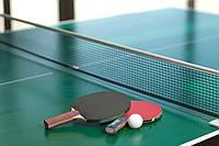 Теннисный стол для помещений, фото 1