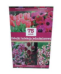 Набор розовых луковичных цветов (75 луковиц)