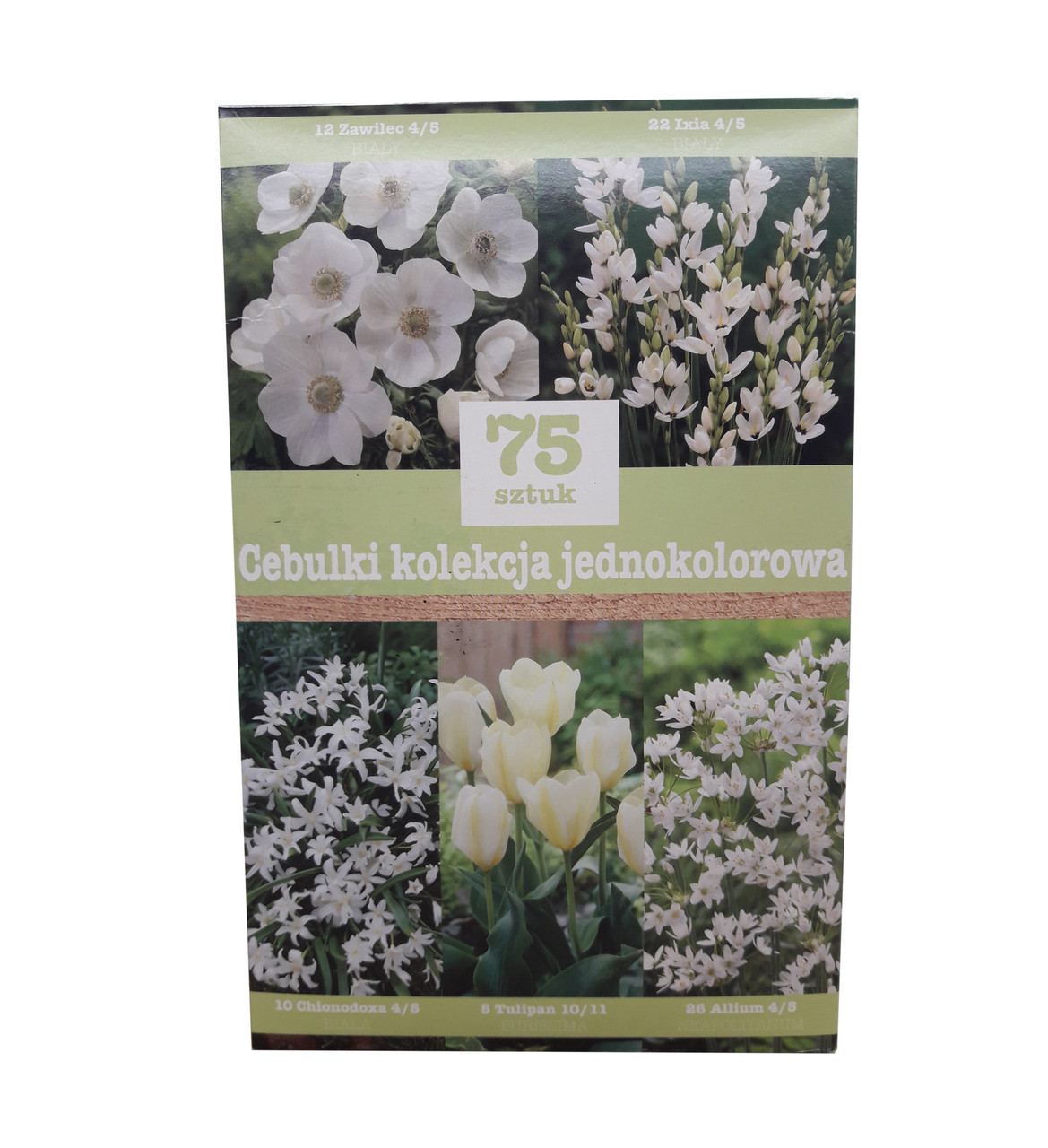 Набор белых луковичных цветов (75 луковиц)