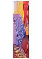 Фотокартина на холсте Перья, 50*180 см