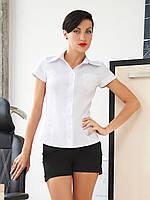 Классическая приталенная белая женская рубашка с коротким рукавом