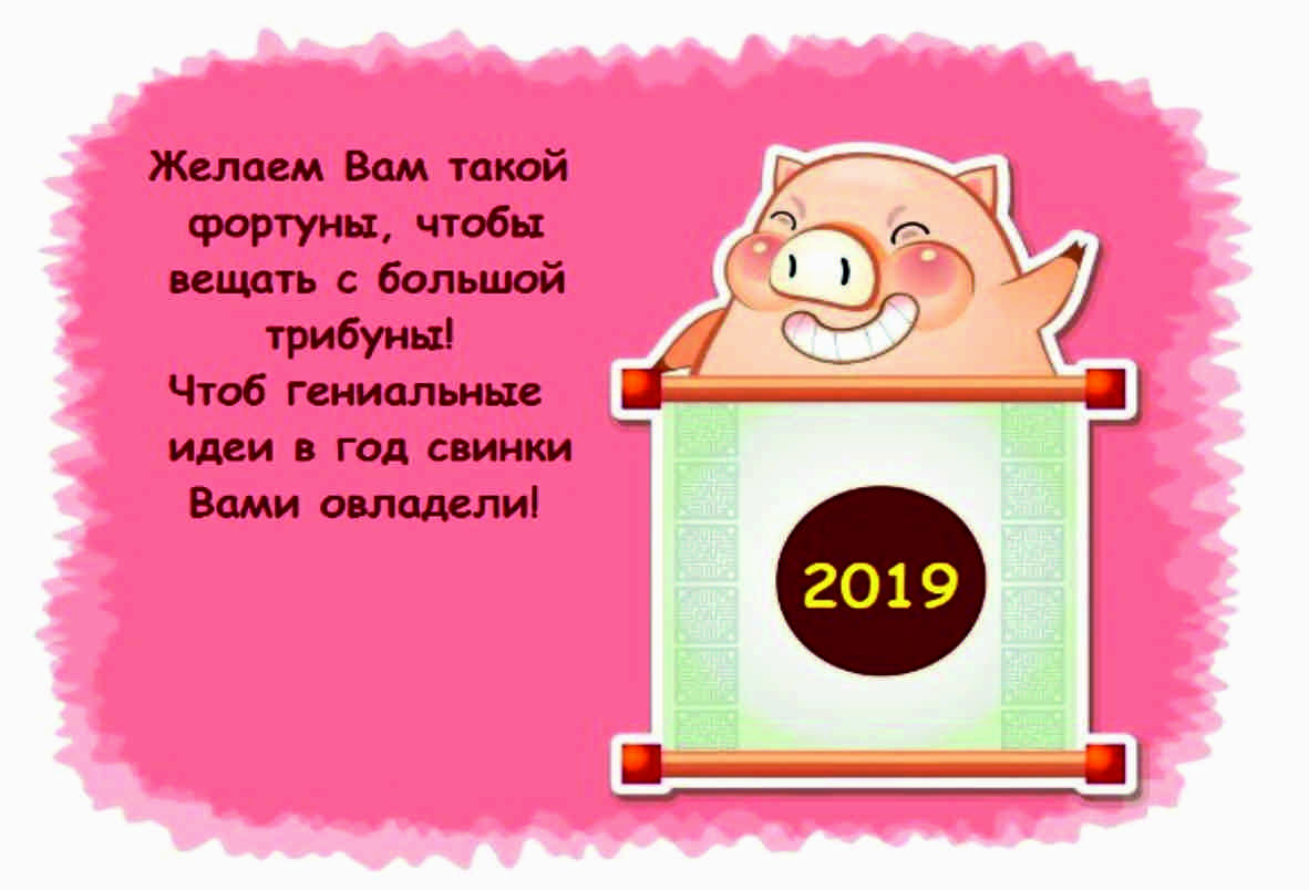 Новогодние поздравления в стихах на год свиньи прикольные, анимашки