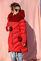 Зимнее пальто на девочку Ясмин Новинка от Тм Nui Very Размеры 116 -158, фото 2