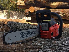 Бензопила Goodluck GLG4500 Professional