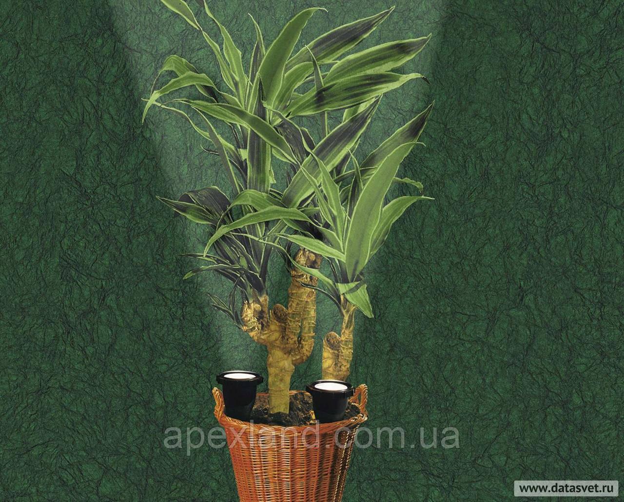 Светильник для комнатных растений