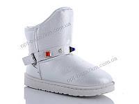 Угги женские ASHIGULI B501 white (36-41) - купить оптом на 7км в одессе