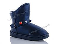 Угги женские ASHIGULI B501 blue (36-41) - купить оптом на 7км в одессе
