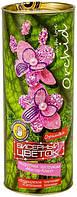 Набор для творчества Бисерный Цветок Орхидея из бисера квітка з бісеру цветочек, ДАНКО ТОЙС, 006154