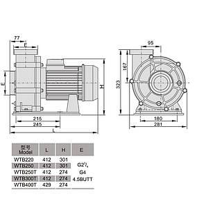 Насос AquaViva LX WTB400T/ZWE400T 80 м3/ч (5,5HP, 380В), для аттракционов (без префильтра), фото 2