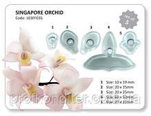 Набор вырубок Орхидея Сингапурская