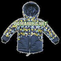 Детская весенняя, осенняя куртка-парка р. 86-92 термо с капюшоном подкладка флис 3395 Синий