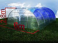 Теплица с поликарбонатом SOTALIGHT 8 мм 6х6м, фото 1