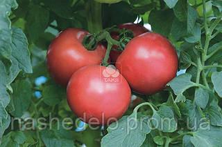 Семена томата ТЕХ 2721 F1 250 семян Takii Seed