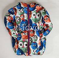 Детская зимняя утепленная куртка для мальчика для девочки евро зима 3-4 года