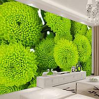 """3D фотообои """"Зеленые цветы"""""""