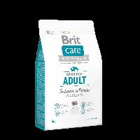 Сухой корм для взрослых собак до 25 кг Brit Care GF Adult Salmon & Potato, 1 кг