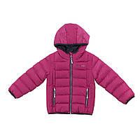 Демисезонная куртка для девочки NANO F18 M 1250 Candy Berries. Размер 2-14., фото 1