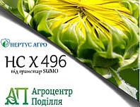 Семена подсолнечника НС-Х-496 OR (стойкий к заразихе - 7 рас) устойчивый к гранстару (НЕРТУС)