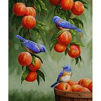 Идейка КПН KHO 2429 Тварини Дрозди і персики