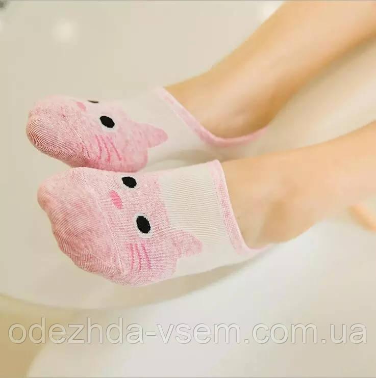 Низкие носки - следы Котики