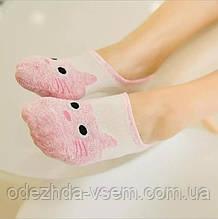 Низькі шкарпетки - сліди Котики