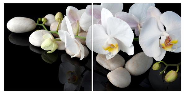 """Картина на стекле """"Белая орхидея на камнях"""""""
