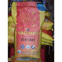 Купить Семена подсолнечника Прими (стандарт)