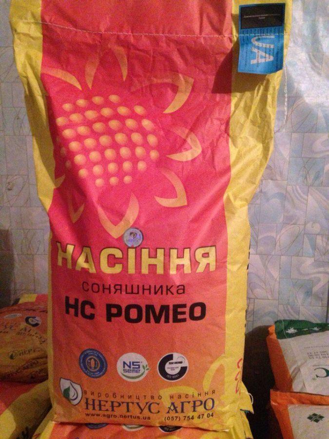 Купить Семена подсолнечника НС Ромео