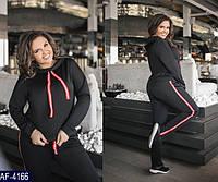 Спортивный костюм     (размеры 50-56)  0111-52