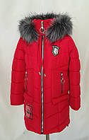 Зимние пальто  для  девочек  интернет магазин   34-44 синий