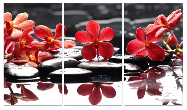 """Картина на стекле """"Красные цветы на камнях"""""""