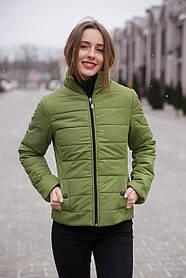 Куртка женская демисезонная воротник стойка