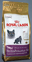 ROYAL CANIN BRITISH SHORTHAIR 2 КГ.