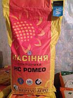 Семена подсолнечника НС Ромео