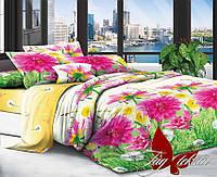 Комплект постельного белья 200х220 поликотон TAG XHY717